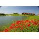Thracian Cliffs Golf & Beach Resort - Каварна